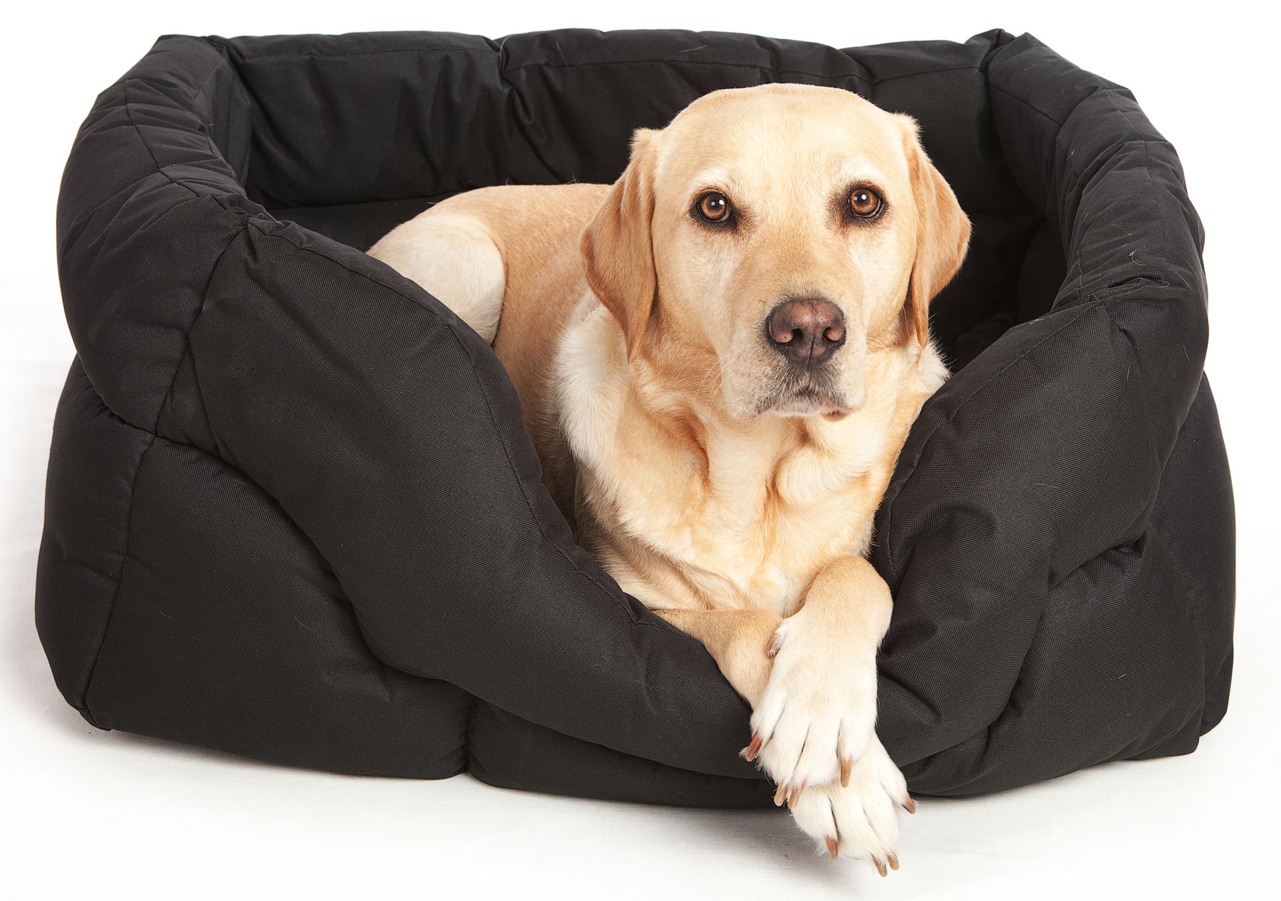 Country Pet Dog Beds