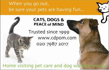 cats dogs amp peace of mind pet care services and pet sitting in
